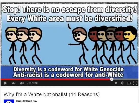 whitegenocide8